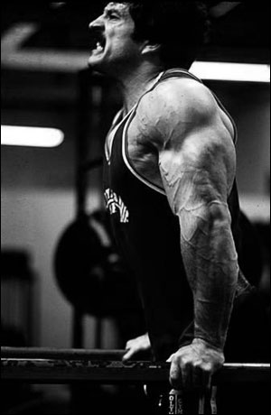 mike-mentzer-dips