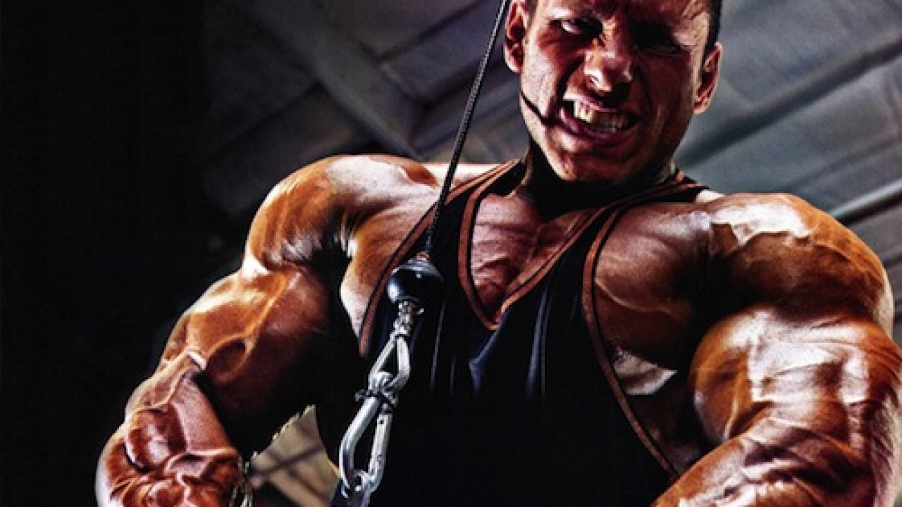 To People That Want To Start gare bodybuilding But Are Affraid To Get Started